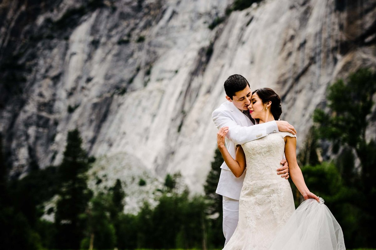 wedding portrait  aT YOSEMITE NATIONAL PARK