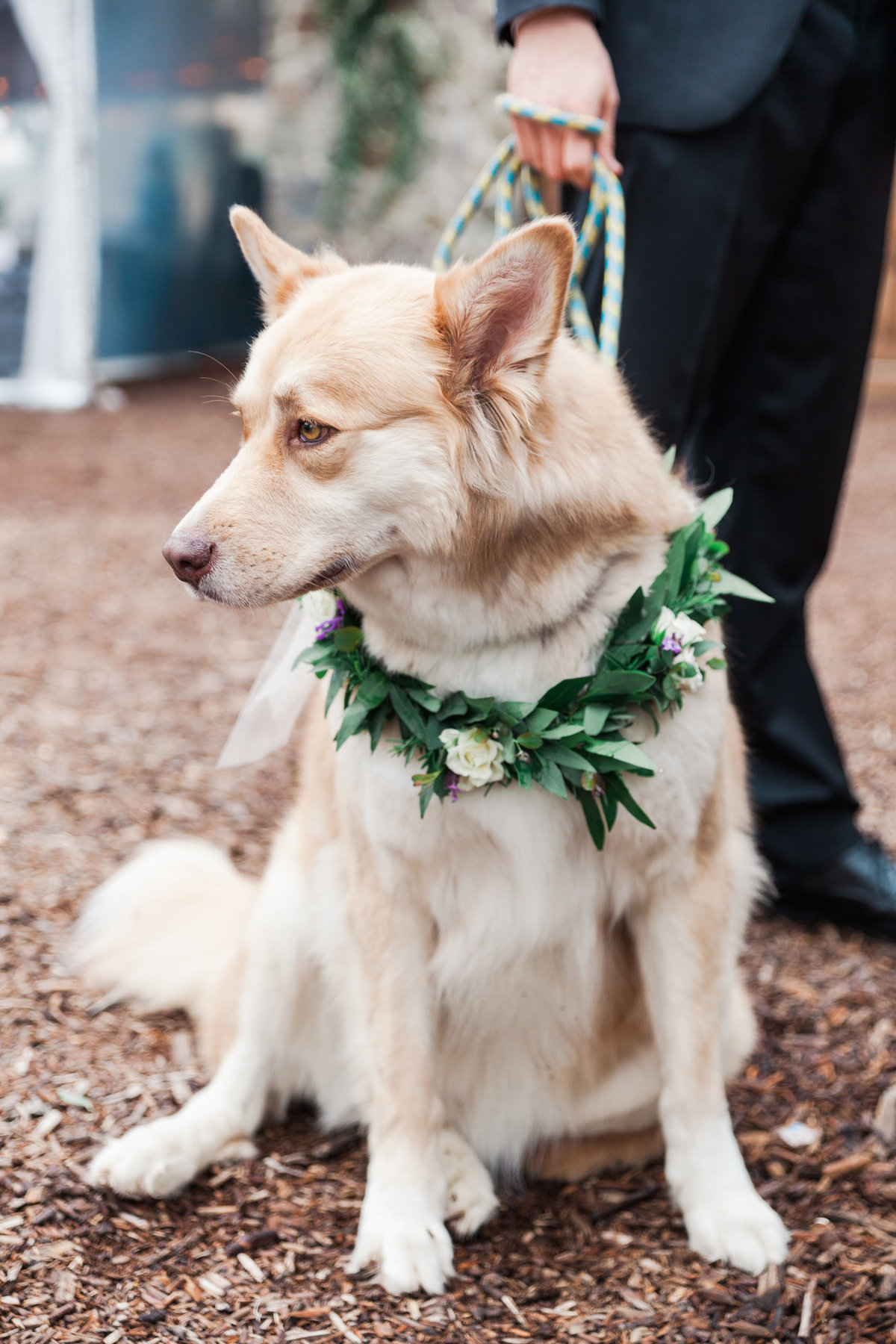 Palihouse_Cielo_Farms_Malibu_Rustic_Wedding_Valorie_Darling_Photography - 75 of 107
