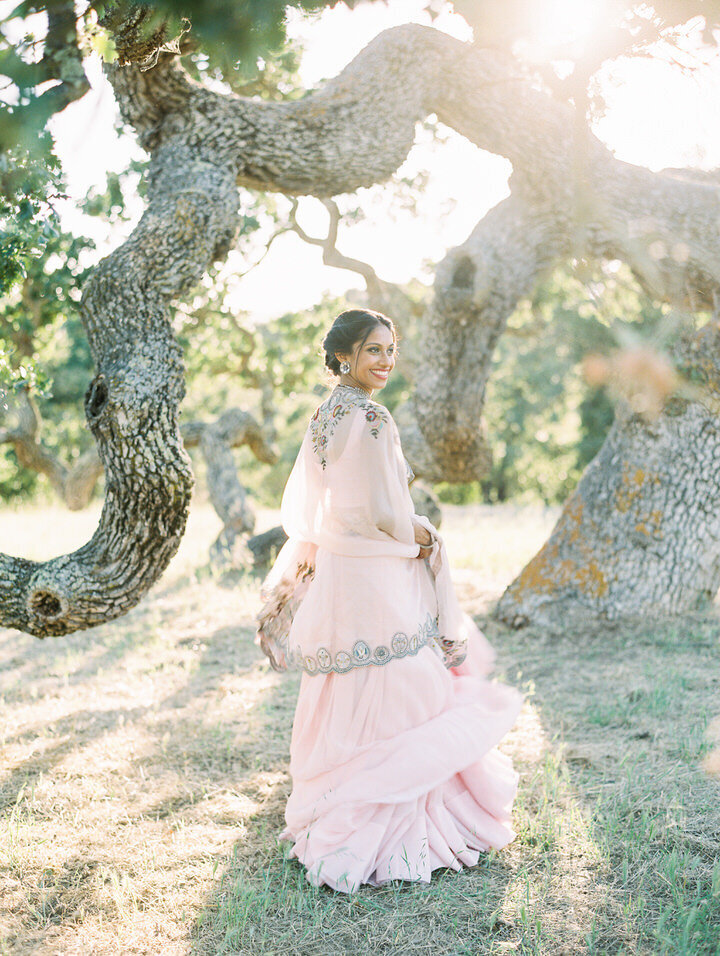 wedding portraits at the oak tree at holman ranch