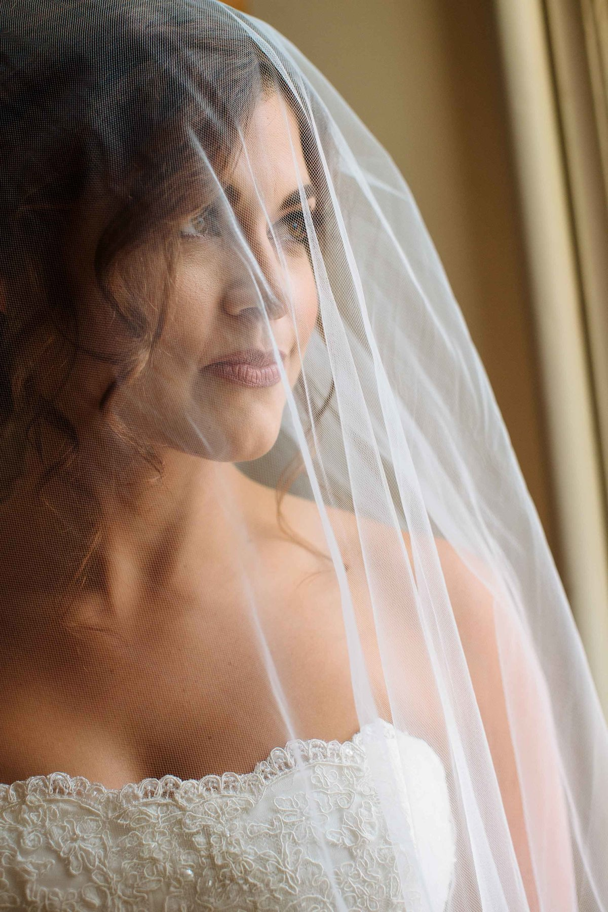 A veil covering a bride as she looks out a window.