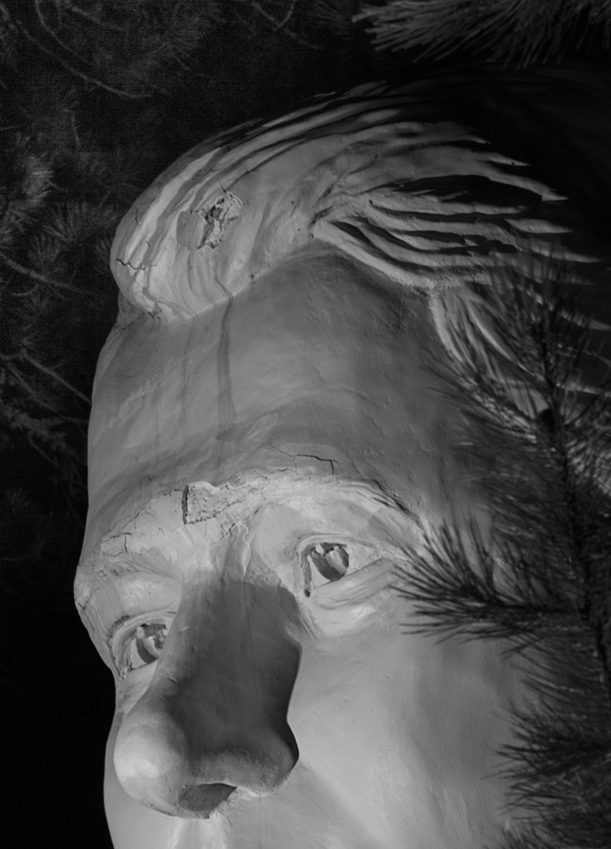 amanda hankerson photographed abandoned sculptures of president's heads in the black hills of south dakota