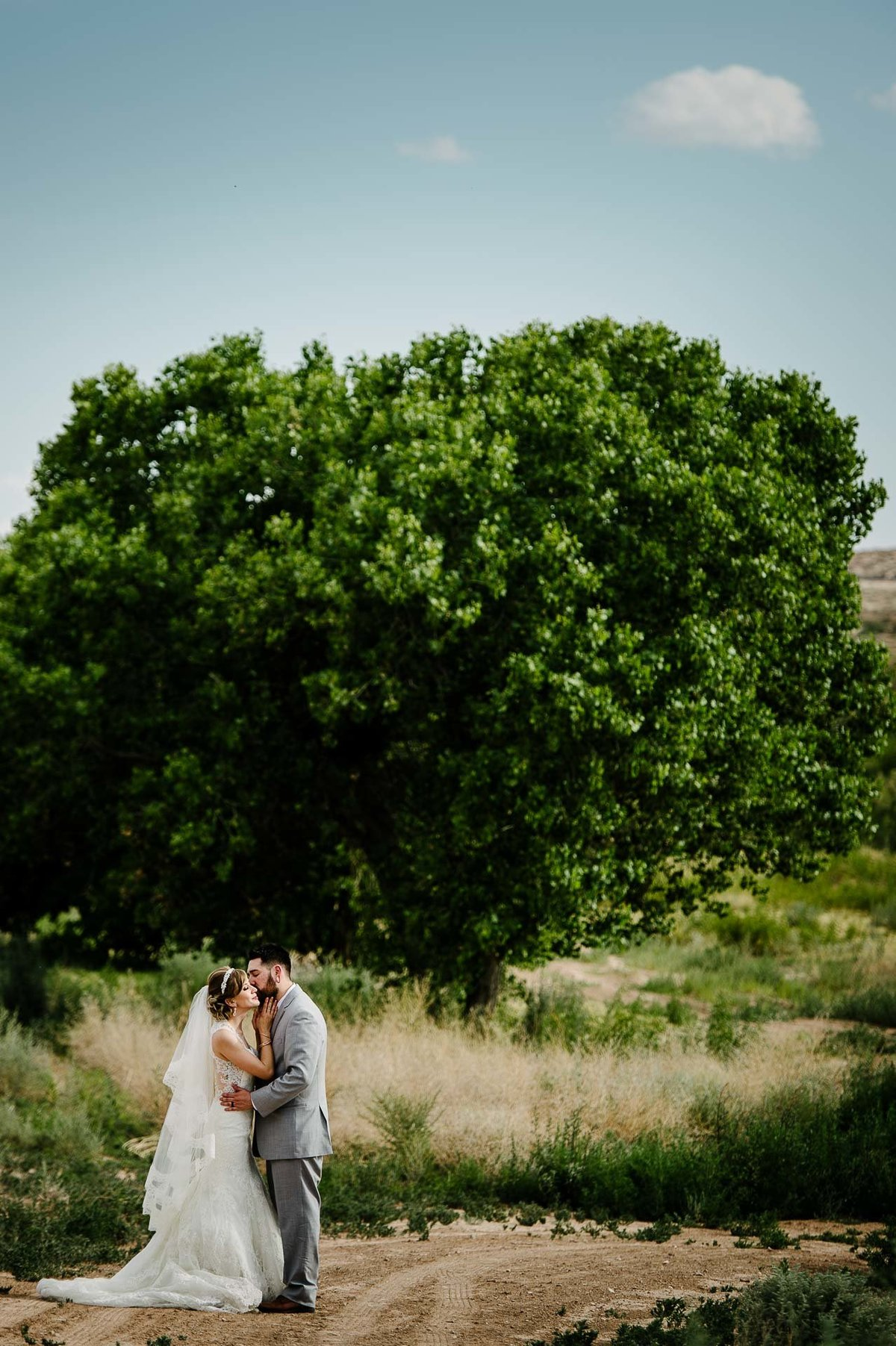 bride and groom kissing in front of green tree