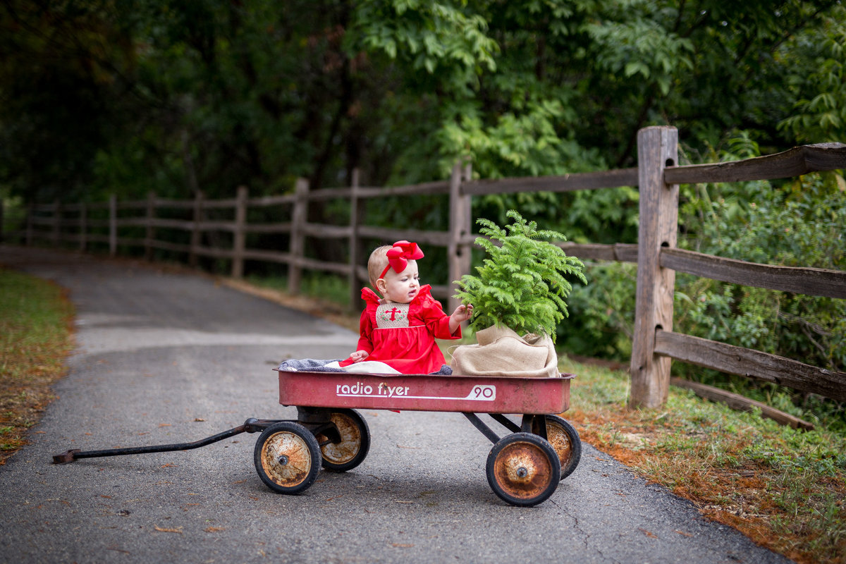 Baby sitting in s red wagon with a small Christmas tree posing for a San Antonio Photographer in Denman Estate park