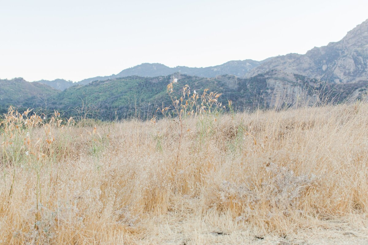 blog-Malibu-State-Creek-Park-Engagament-Shoot-boho-0020