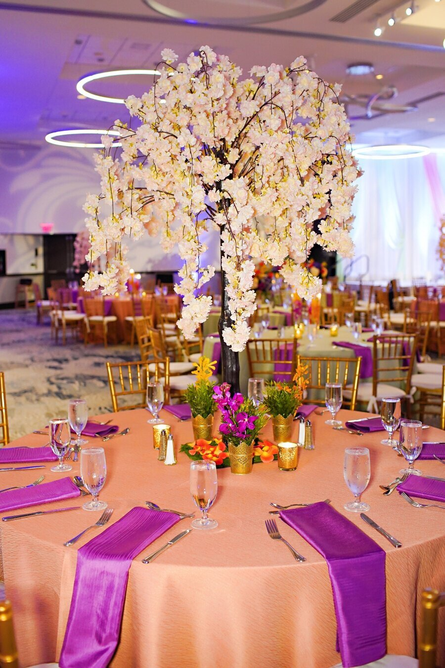 indian-wedding-planner-indianapolis_0083
