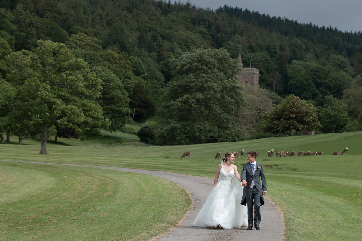 Bride and Groom walking in the Deer Park at Somerset wedding venue St Audries Park_