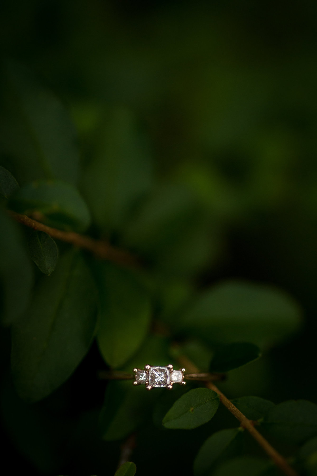 mirna+alex_engaged_jtp2018-83