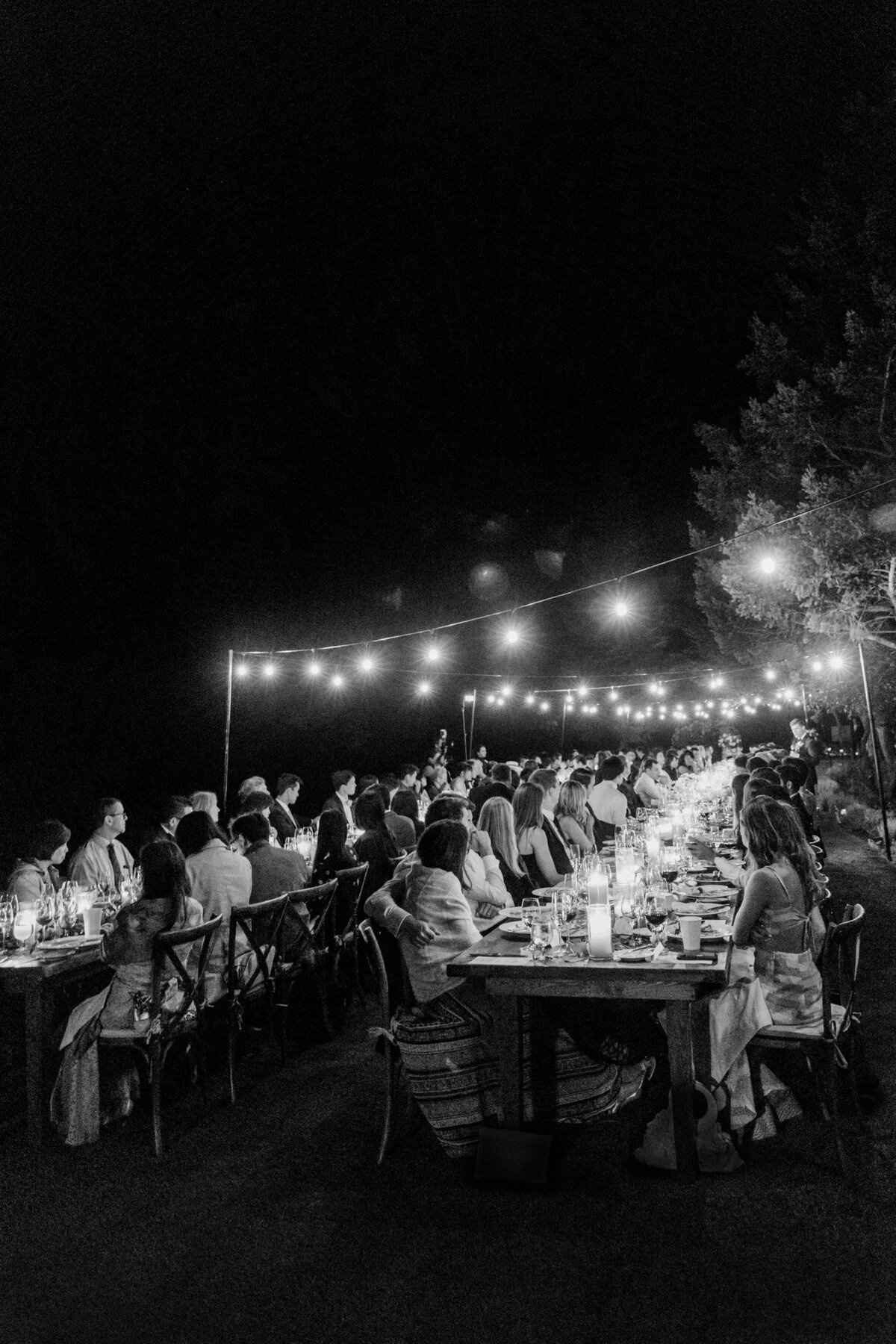 Solage_Calistoga_Auberge_Wedding-096