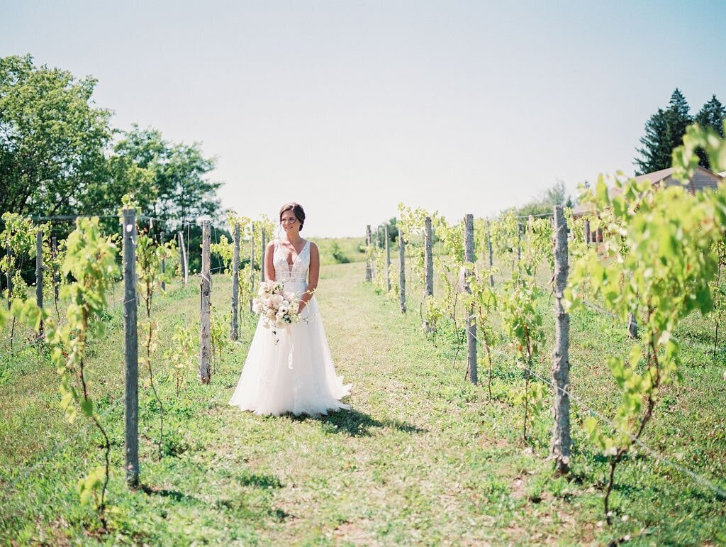 Bay Harbor Winery Wedding Vineyard-min