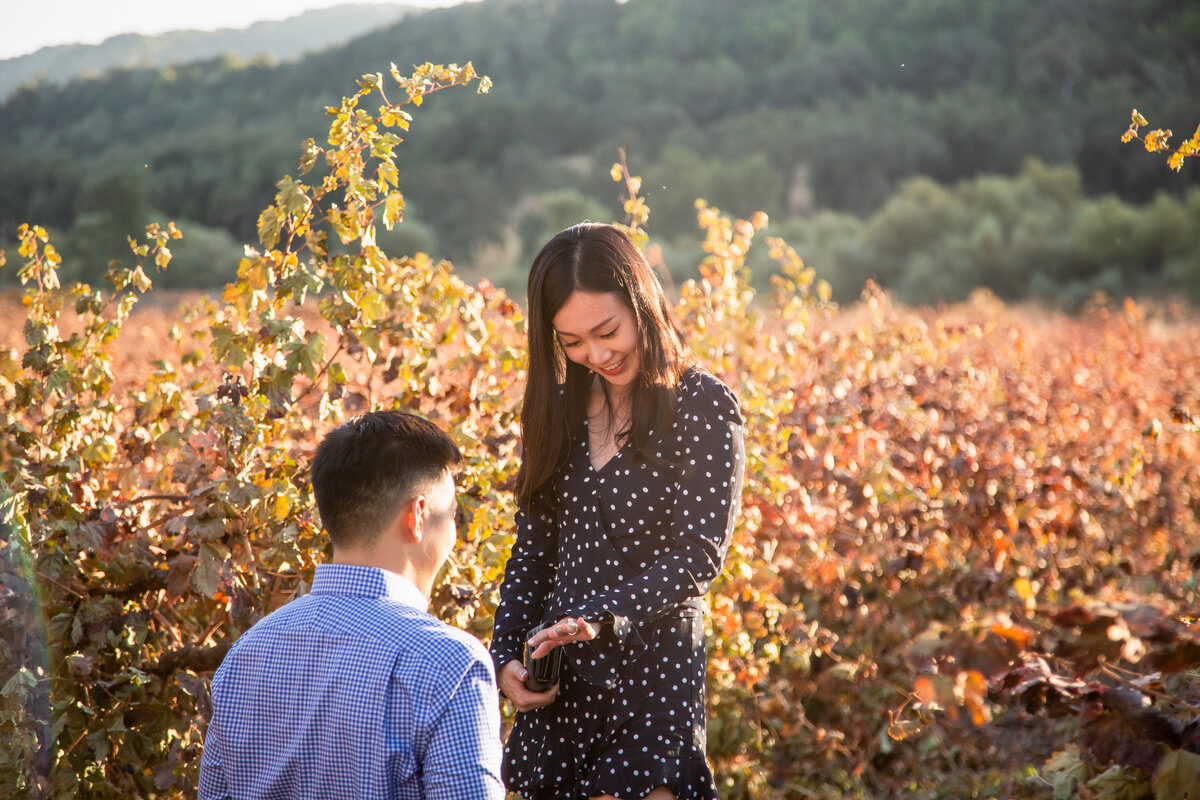 CA Vineyard Surprise Proposal (21 of 63)