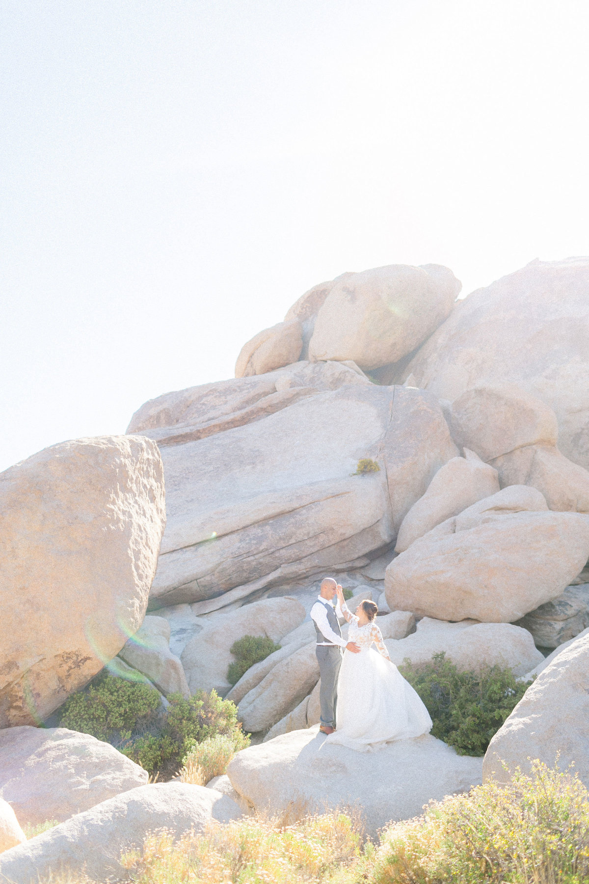 lisadejager-joshua-tree-wedding-778