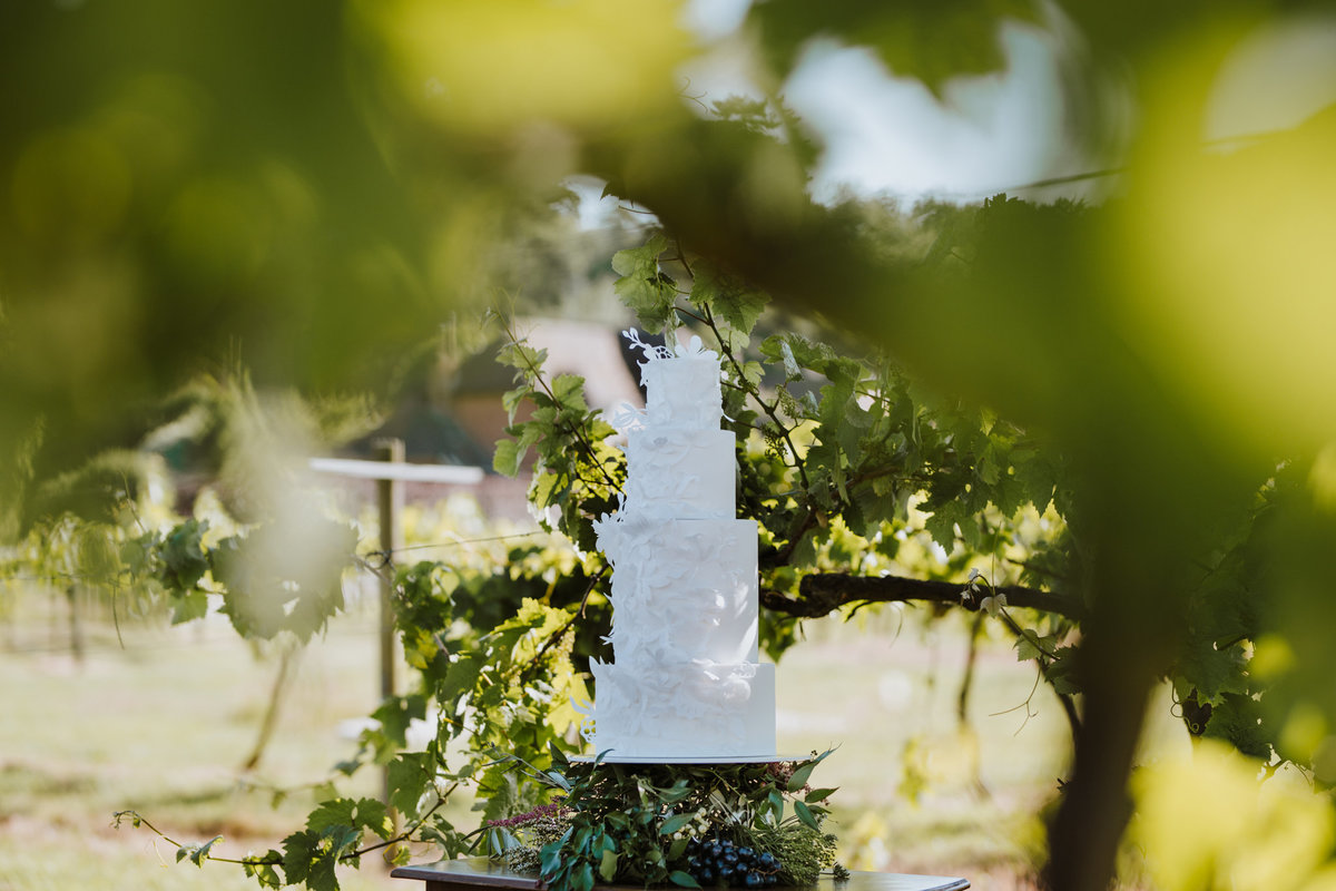 The Stars Inside - Vineyard Destination Wedding - Laura Martha Photography (74)