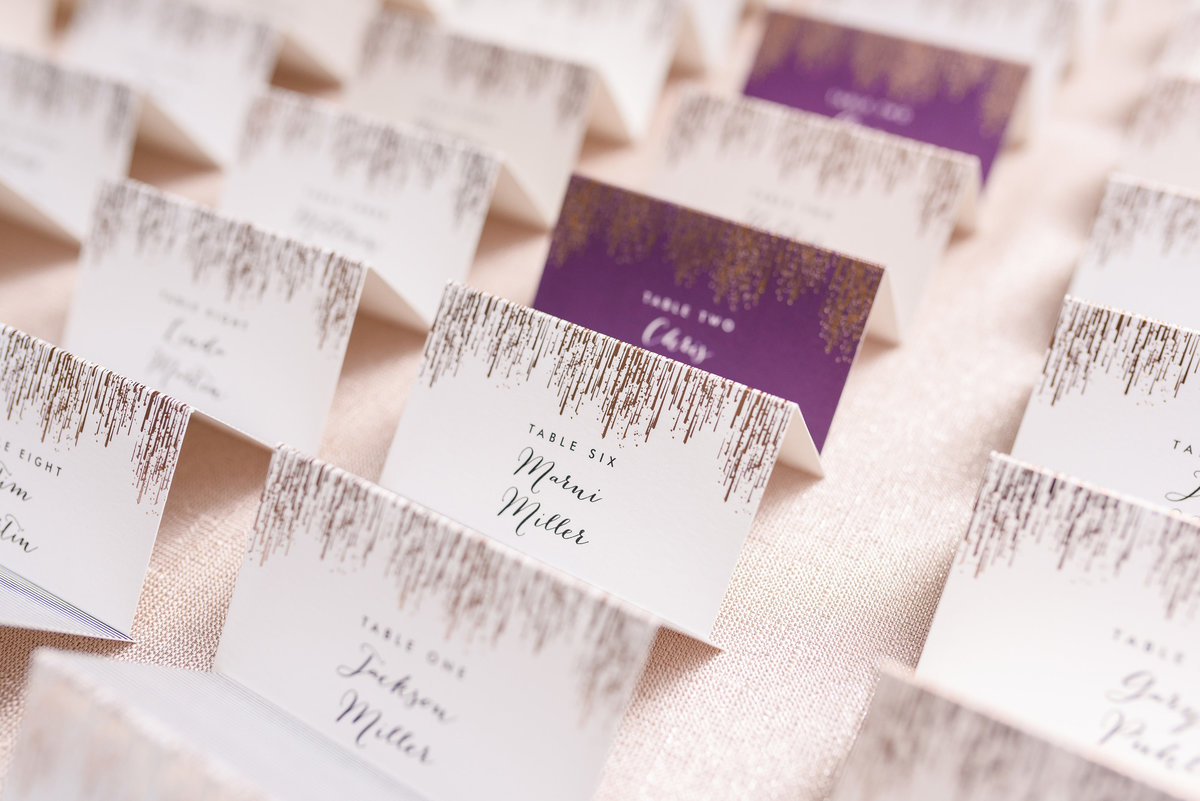 seven-seas-wedding-the-paper-elephant-094
