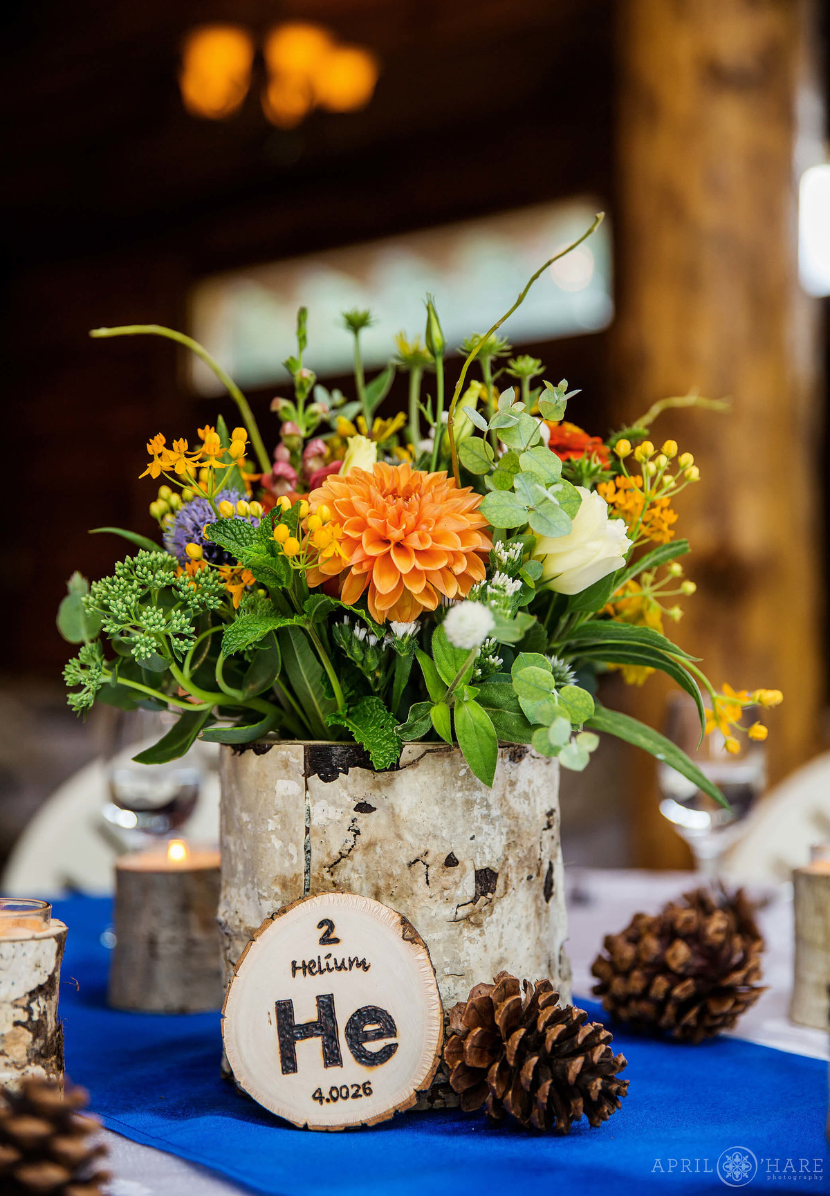 Chemistry loving wedding couple at Wedgewood Weddings Mountain View Ranch in Pine