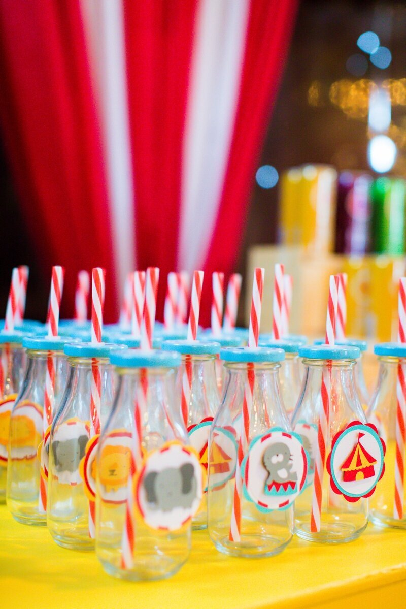 Circus Themed 1st Birthday Indianapolis Party Planner_0044