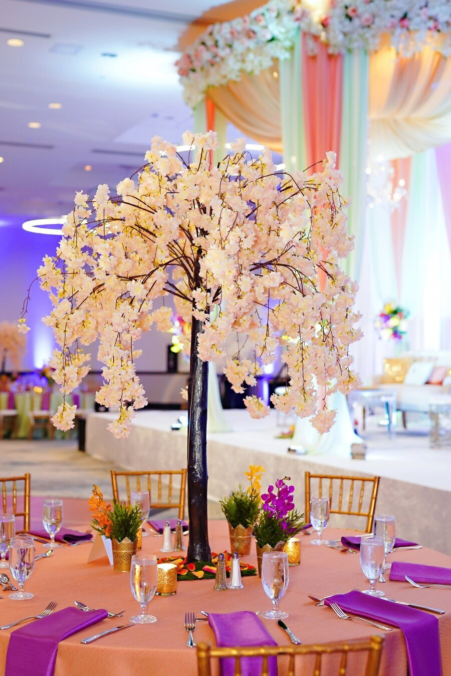 indian-wedding-planner-indianapolis_0070