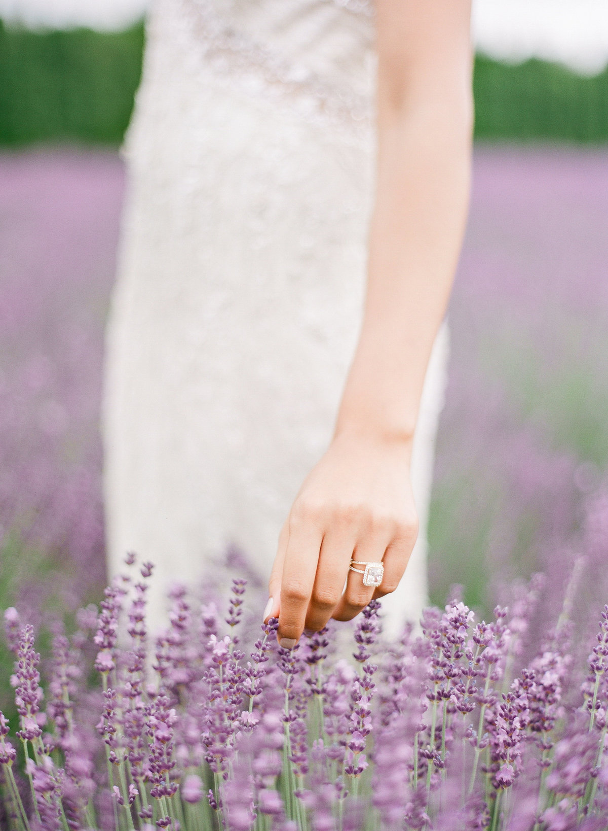 Woodinville Lavender Wedding-6