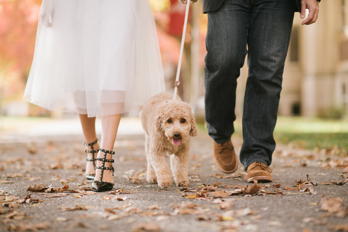 Couple walking a dog wearing valentino shoes and a tulle skirt