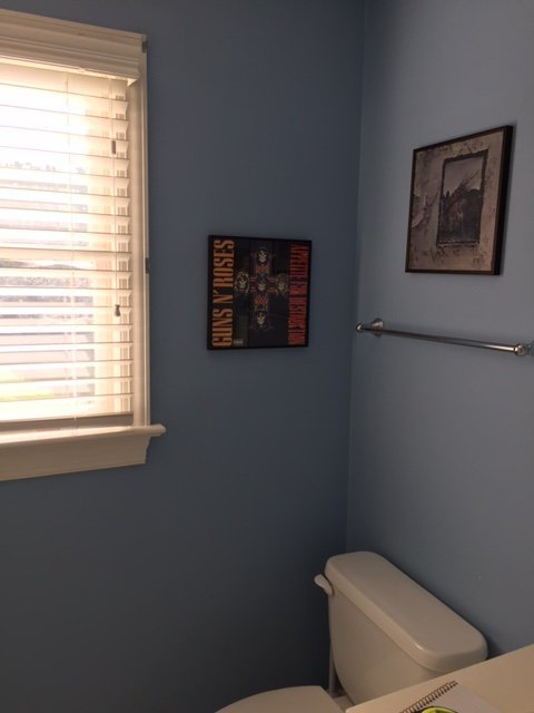 Interior Design and Remodel of Guest Bathroom located in Davidson North Carolina