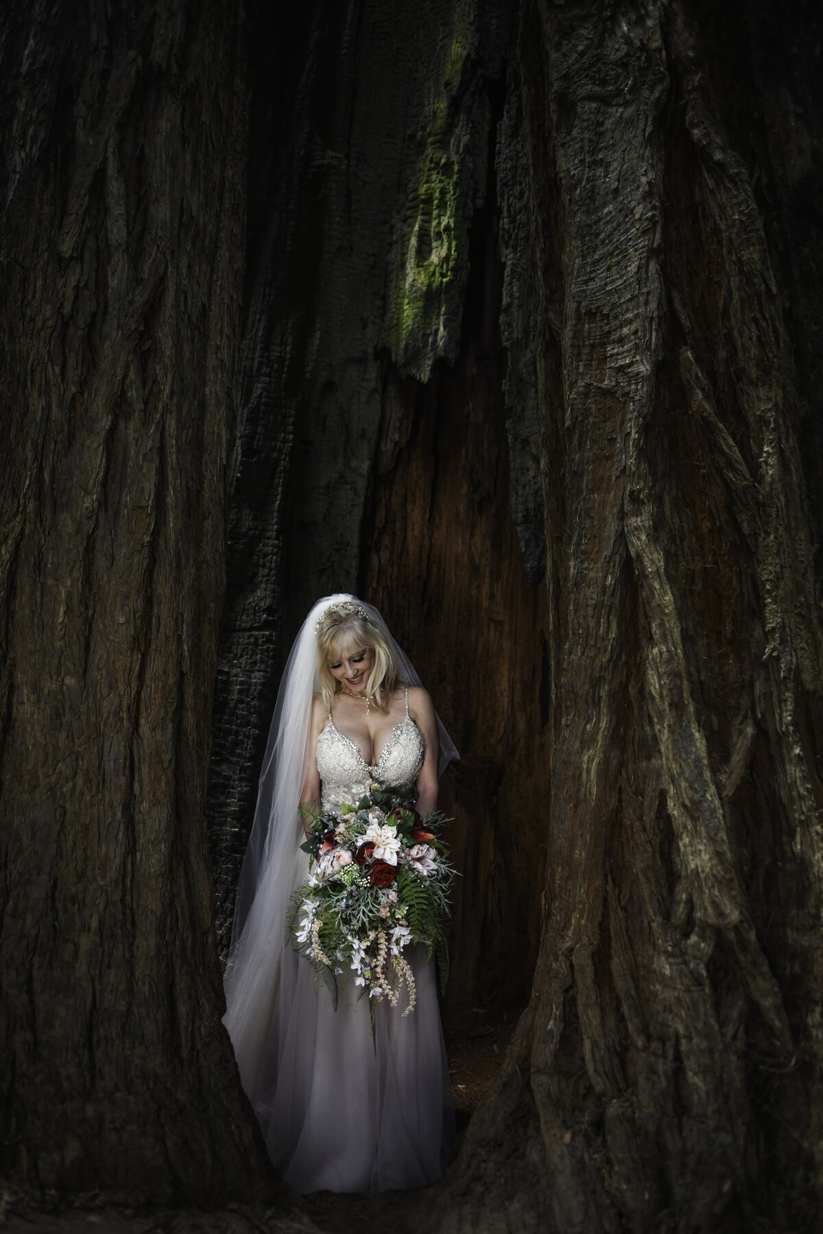 Redway-California-elopement-photographer-Parky's-Pics-Photography-redwoods-elopement-Avenue-of-the-Giants-Pepperwood-California-20.jpg