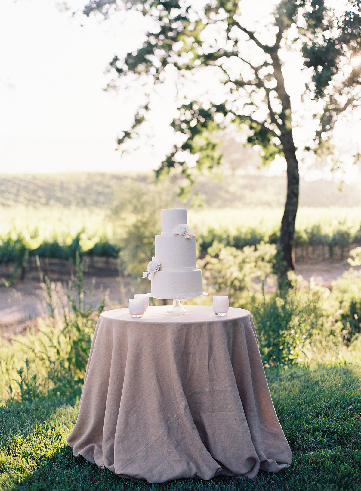 Cake for wedding by Jenny Schneider Events in Napa Valley, California. Photo by Eric Kelley Photography.