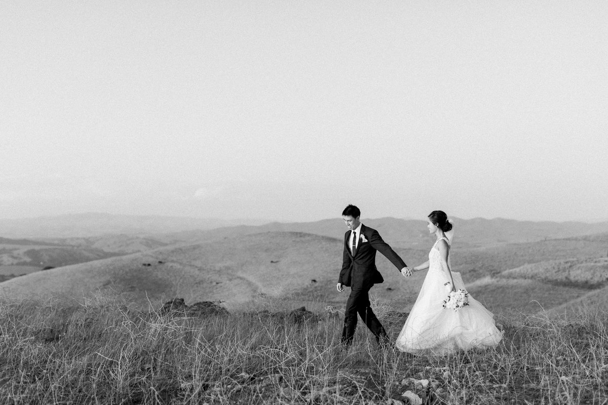 Groom leading his bride across a hilltop.