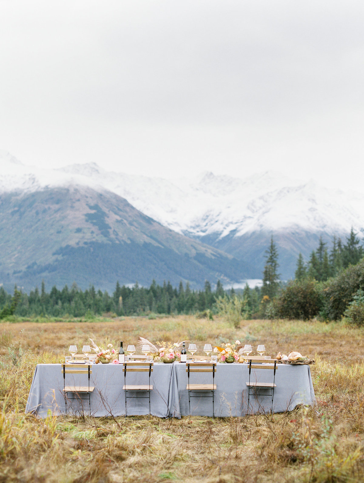 Alaska elopement Moose Meadows film photographer