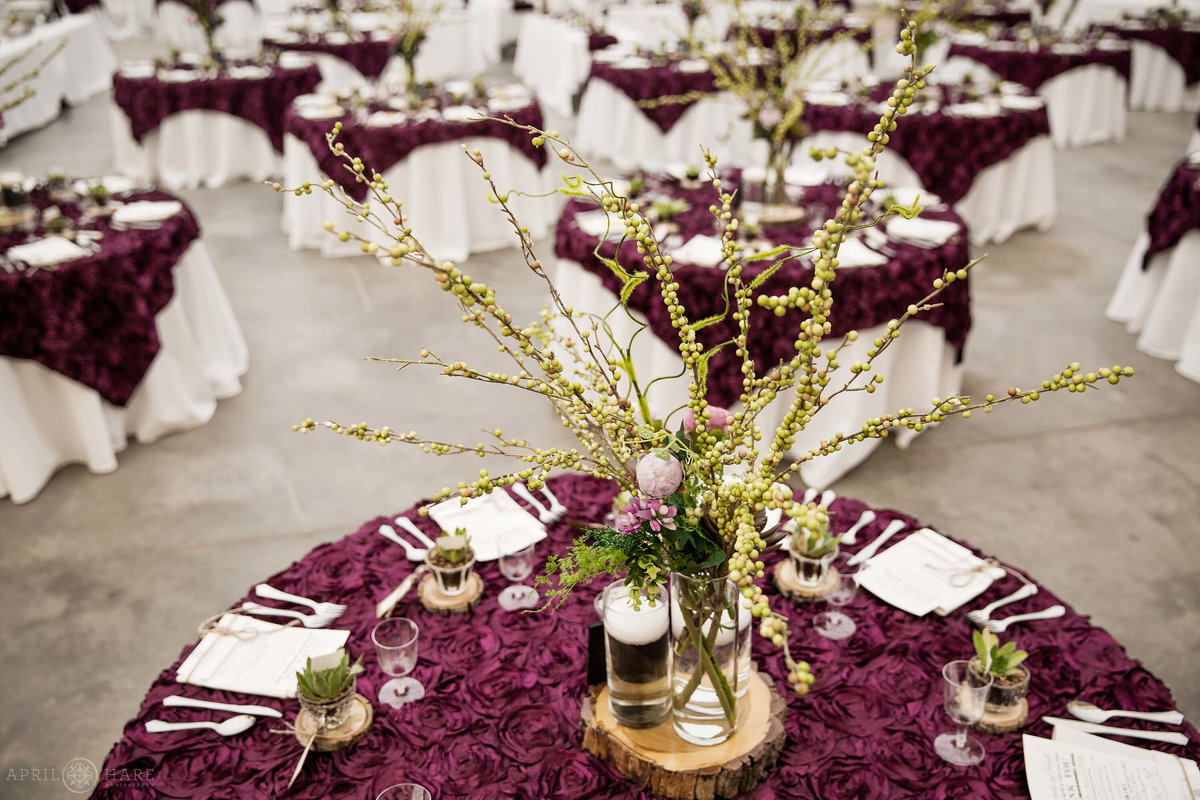 DIY Purple Wedding on a farm in Monte Vista Colorado