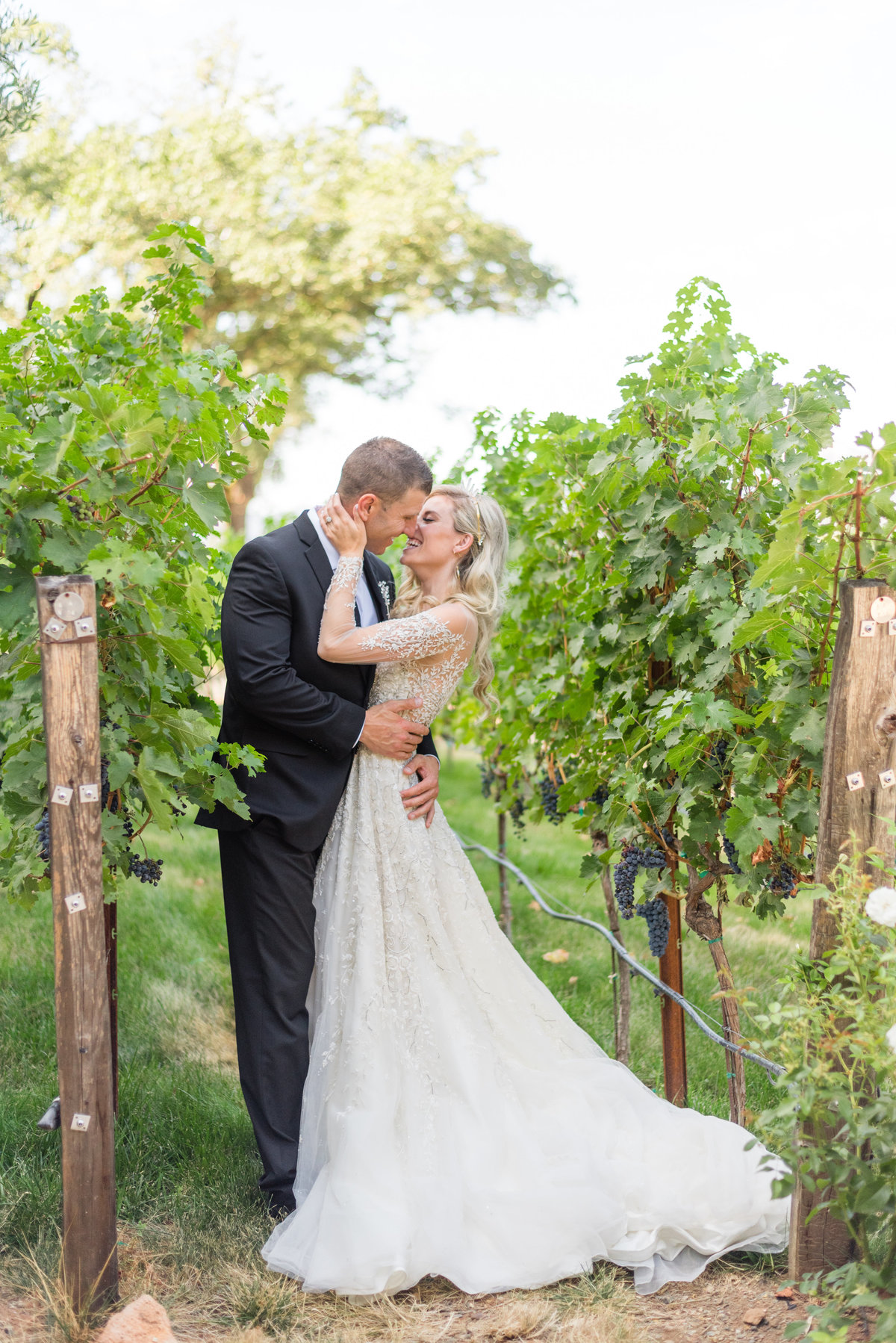 Brasswood-Estate-Napa-Wedding-Shannon-May-Brown-34