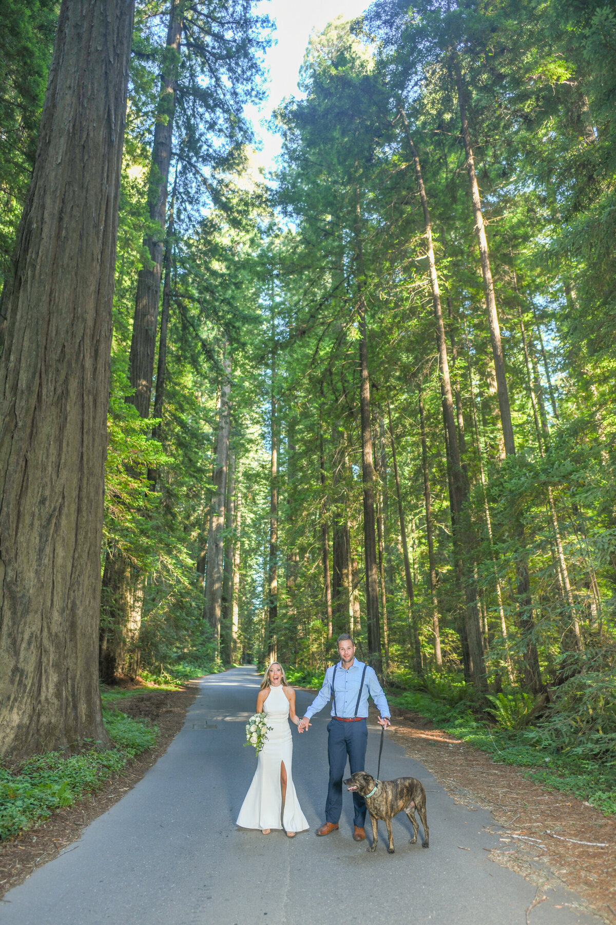 Humboldt-County-Elopement-Photographer-Redwoods-Avenue-of-the-Giants-Humboldt-Redwoods-Redwood-National-Park-Parky's-Pics-Coastal-Redwoods-Elopements-50