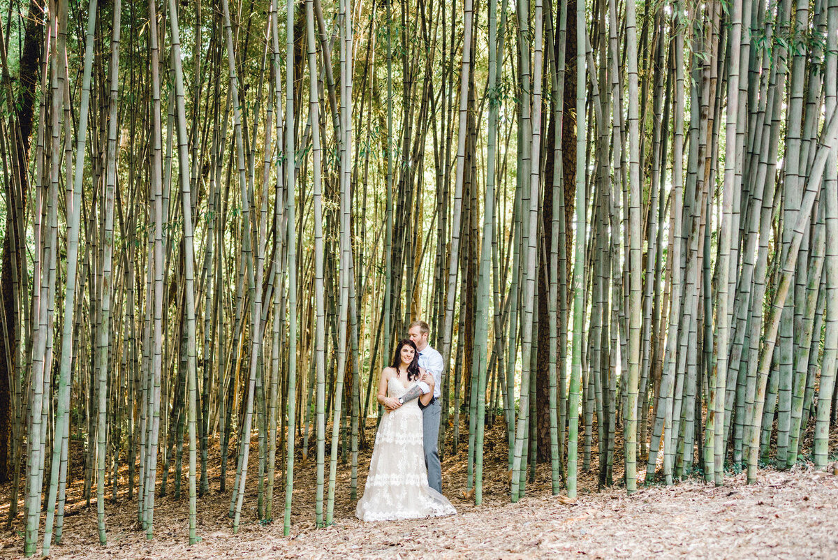 bride and groom pose in front of bamboo forest