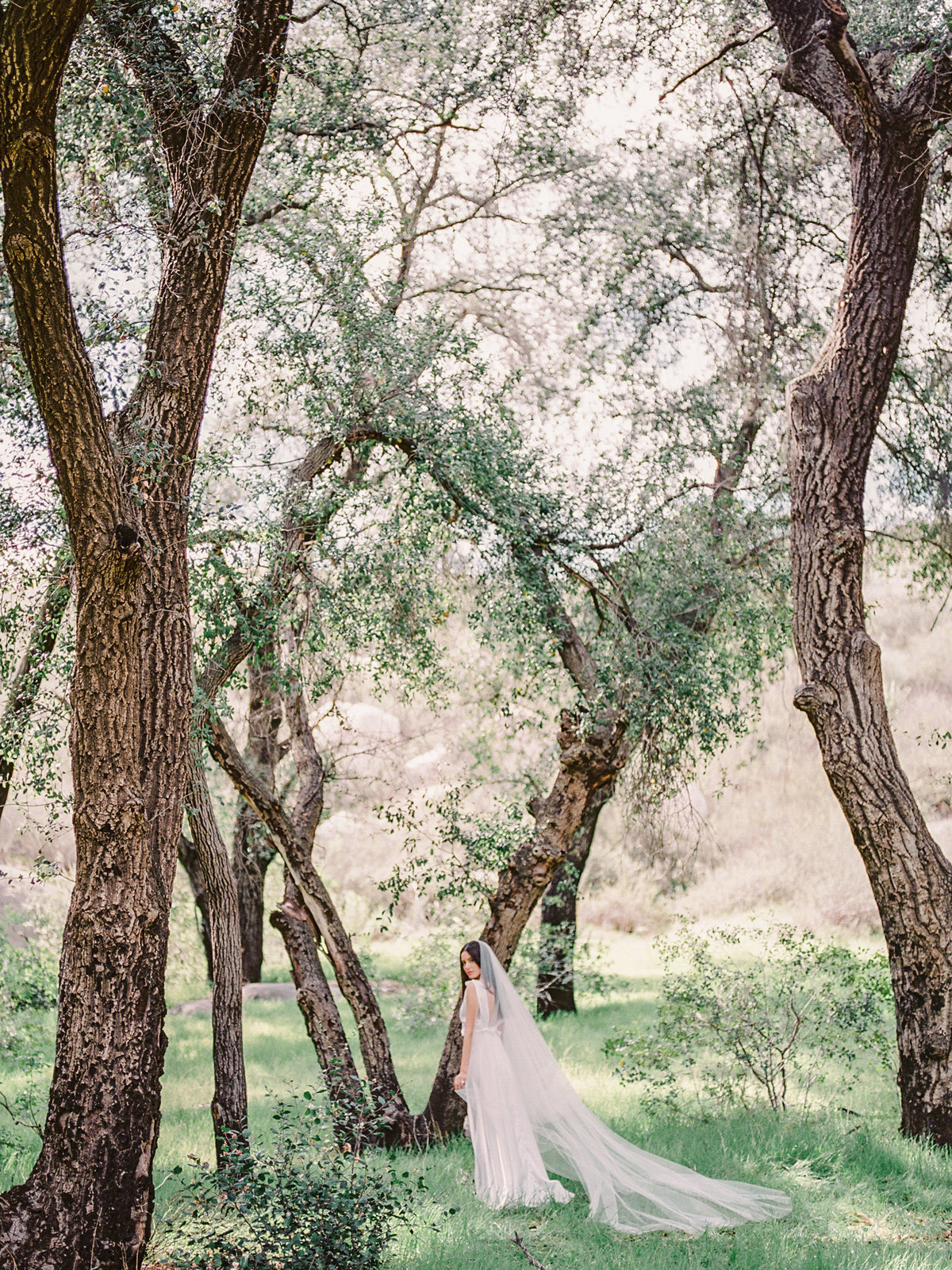 Babsie-Ly-Photography-Fine-Art-Film-Wedding-Bridal-Editorial-in-Hidden-Oaks-San-Diego-024