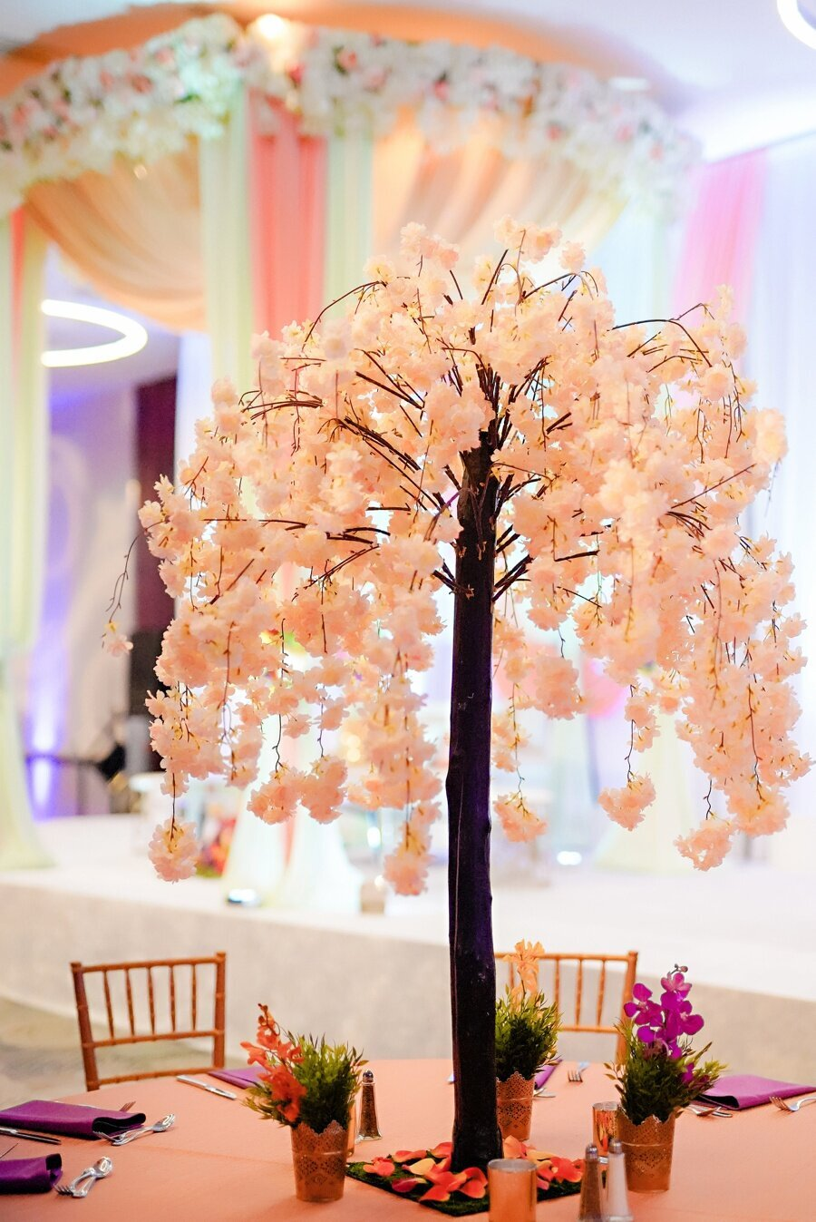 indian-wedding-planner-indianapolis_0067