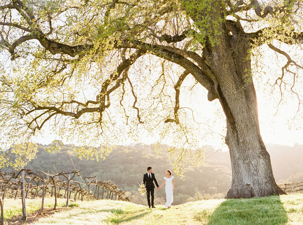 Hammersky-Vineyards-Wedding-by-San-Luis-Obispo-Wedding-Planner-Embark-Event-Design-55