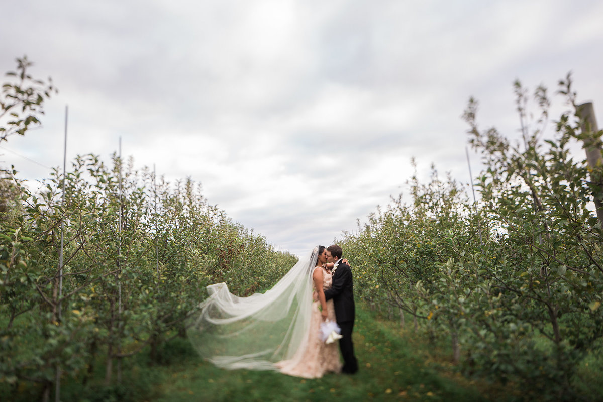 couple kissig in the middle of an orchard