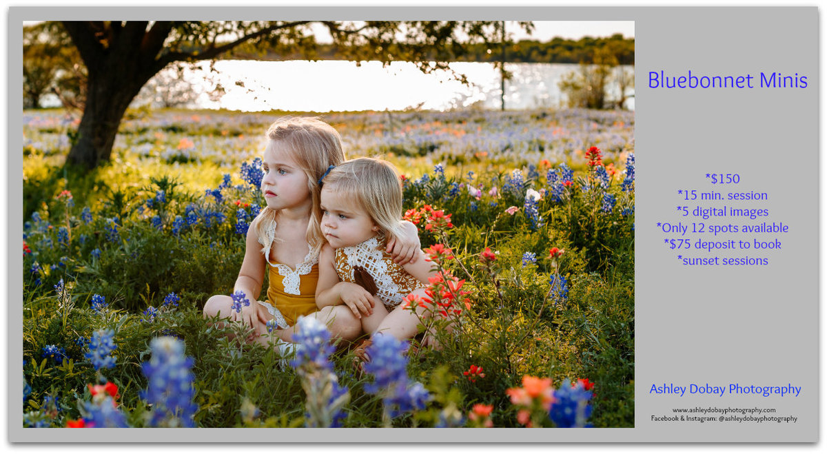 Sign up for bluebonnet minis with Ashley Dobay Photography