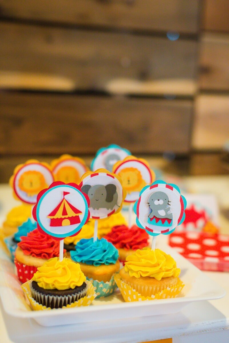 Circus Themed 1st Birthday Indianapolis Party Planner_0032