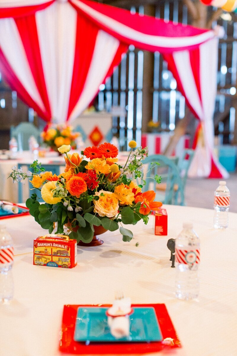 Circus Themed 1st Birthday Indianapolis Party Planner_0004