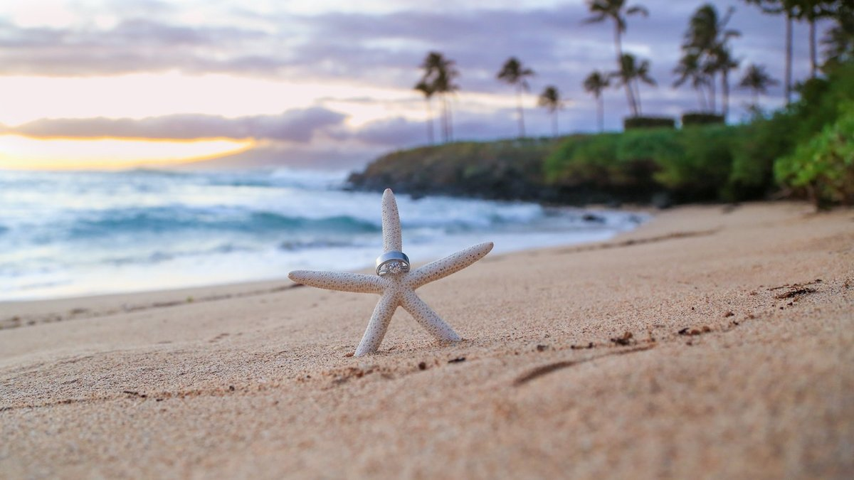 Capture Aloha Photography at The Westin Maui Resort and Spa With standing white Starfish