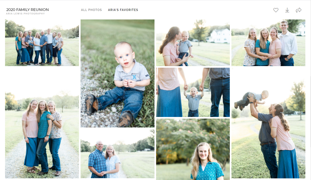 aria-lewis-photography-st-louis-family-photographer