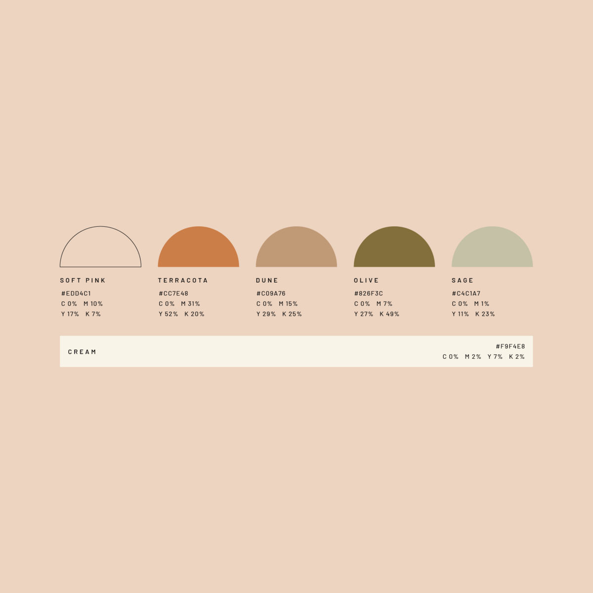olive tree color palette-03
