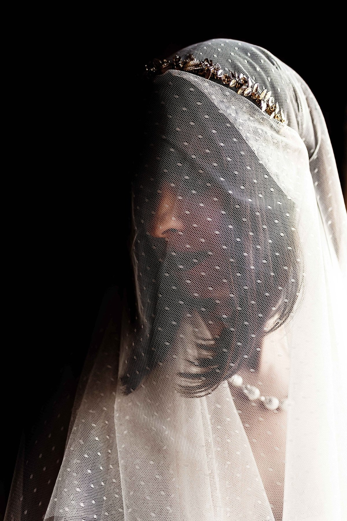 Bride in Long  Polka Dot Veil at Great Marsh Estate Bealeton, VA