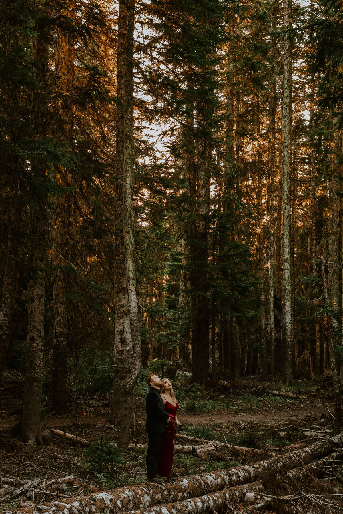 mount-hood-mountain-cabin-woods-elopement-forest-oregon-pnw-wedding-photographer0941