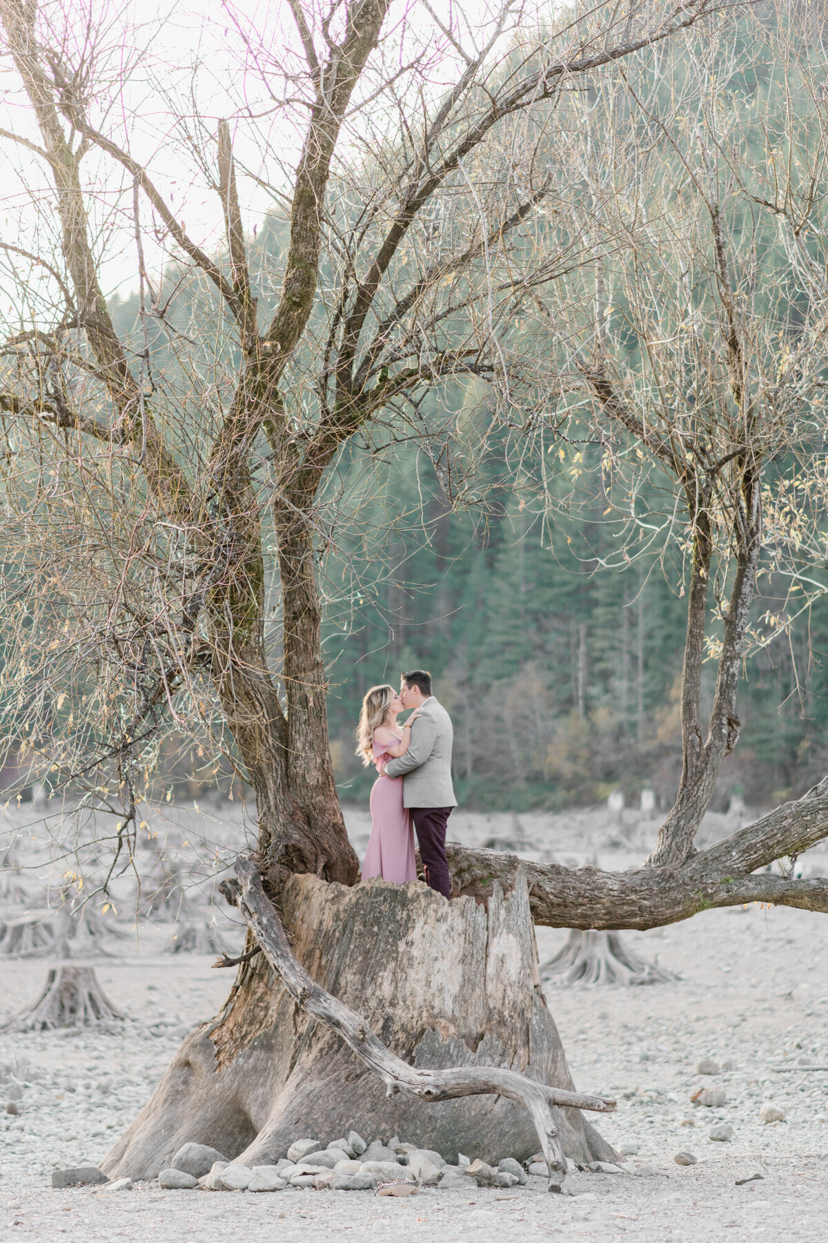 Janet Lin Photography Wedding Engagement Portrait Photographer Pacific Northwest Seattle Yelm Tacoma Washington Portland Oregon Light Airy Fine Art10