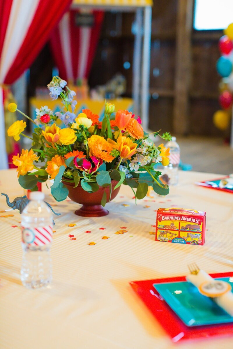 Circus Themed 1st Birthday Indianapolis Party Planner_0033
