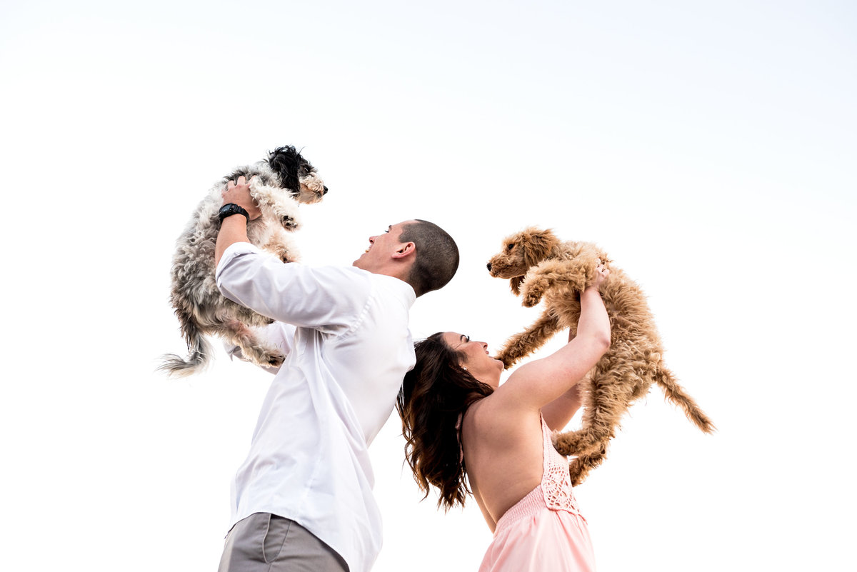 engaged-couple-holding-dogs
