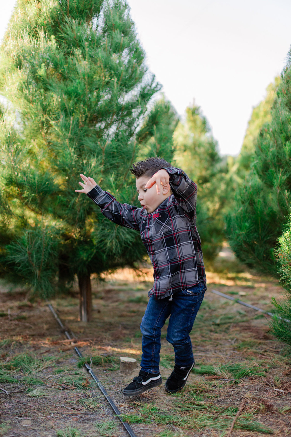 Xmas Photography, Rye Farm Christmas Tree, Family Photography S&V-21