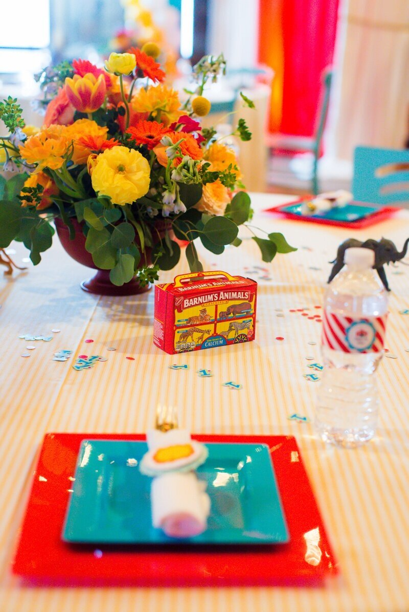 Circus Themed 1st Birthday Indianapolis Party Planner_0039