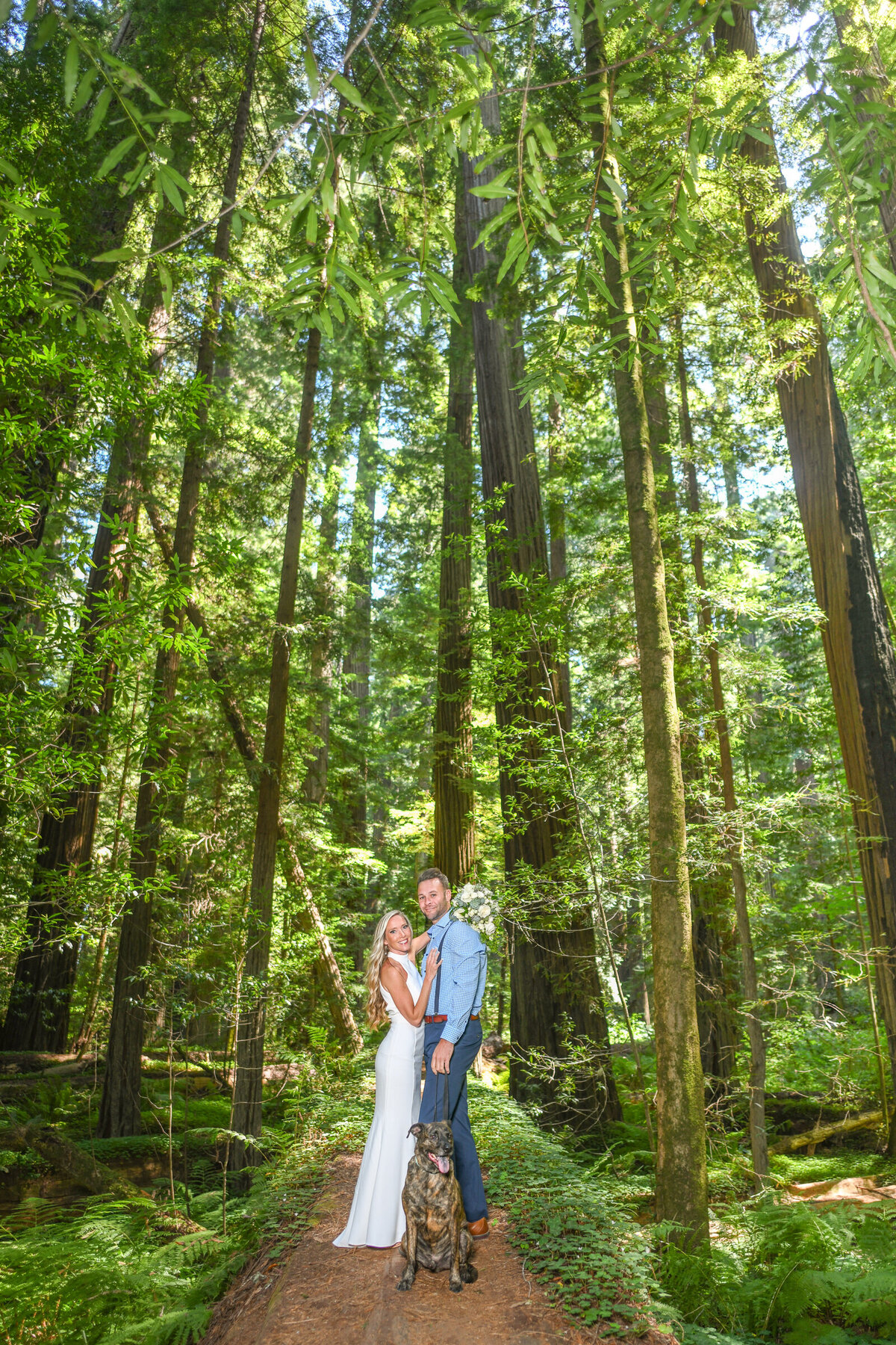 Humboldt-County-Elopement-Photographer-Redwoods-Avenue-of-the-Giants-Humboldt-Redwoods-Redwood-National-Park-Parky's-Pics-Coastal-Redwoods-Elopements-29