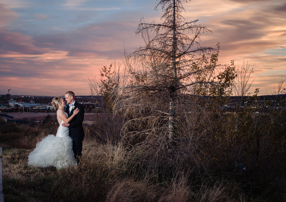 Pine Wedding Colorado Springs-1316